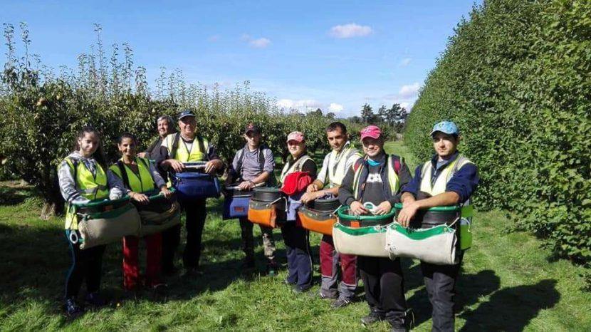 land-, land- en tuinbouwarbeiders uit Roemenië